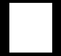 fibre-broadband-icon